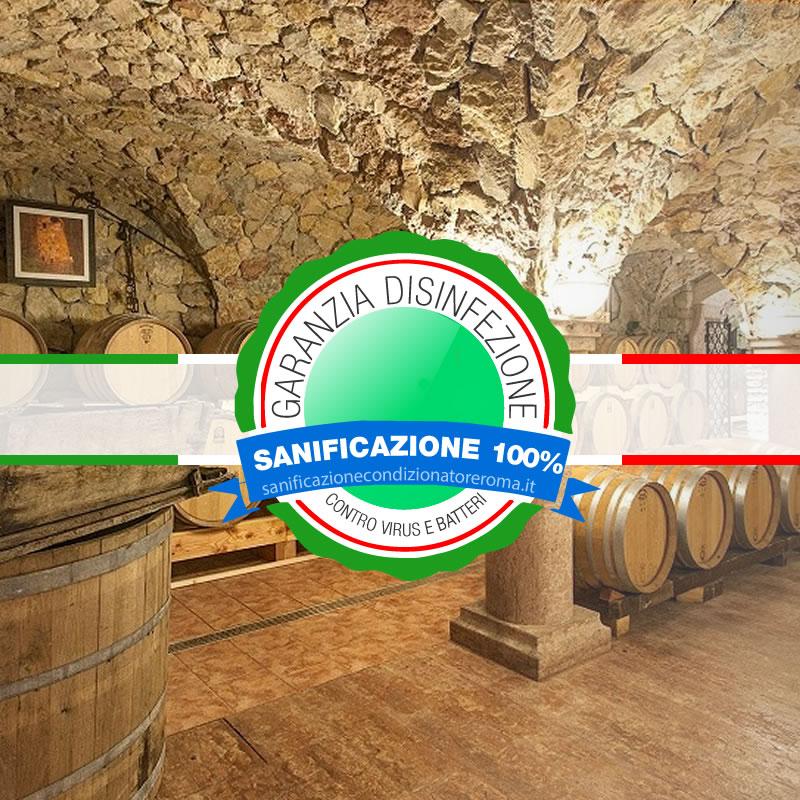 Sanificazione Condizionatori e Climatizzatori Castro Pretorio - Cantine